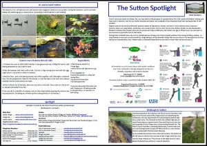 Sutton Spotlight - May 2020 (PDF)