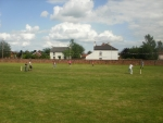 Cricket (01)