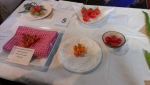 Flower and Produce Show (8)